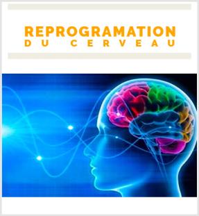Reprogramation du cerveau  Cliquez ici